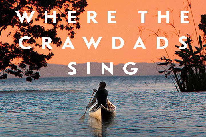 If You Liked Where the Crawdads Sing Image